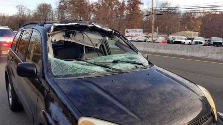 Deer Flies Through Toyota RAV4's Windshield And Lands In The Back Seat