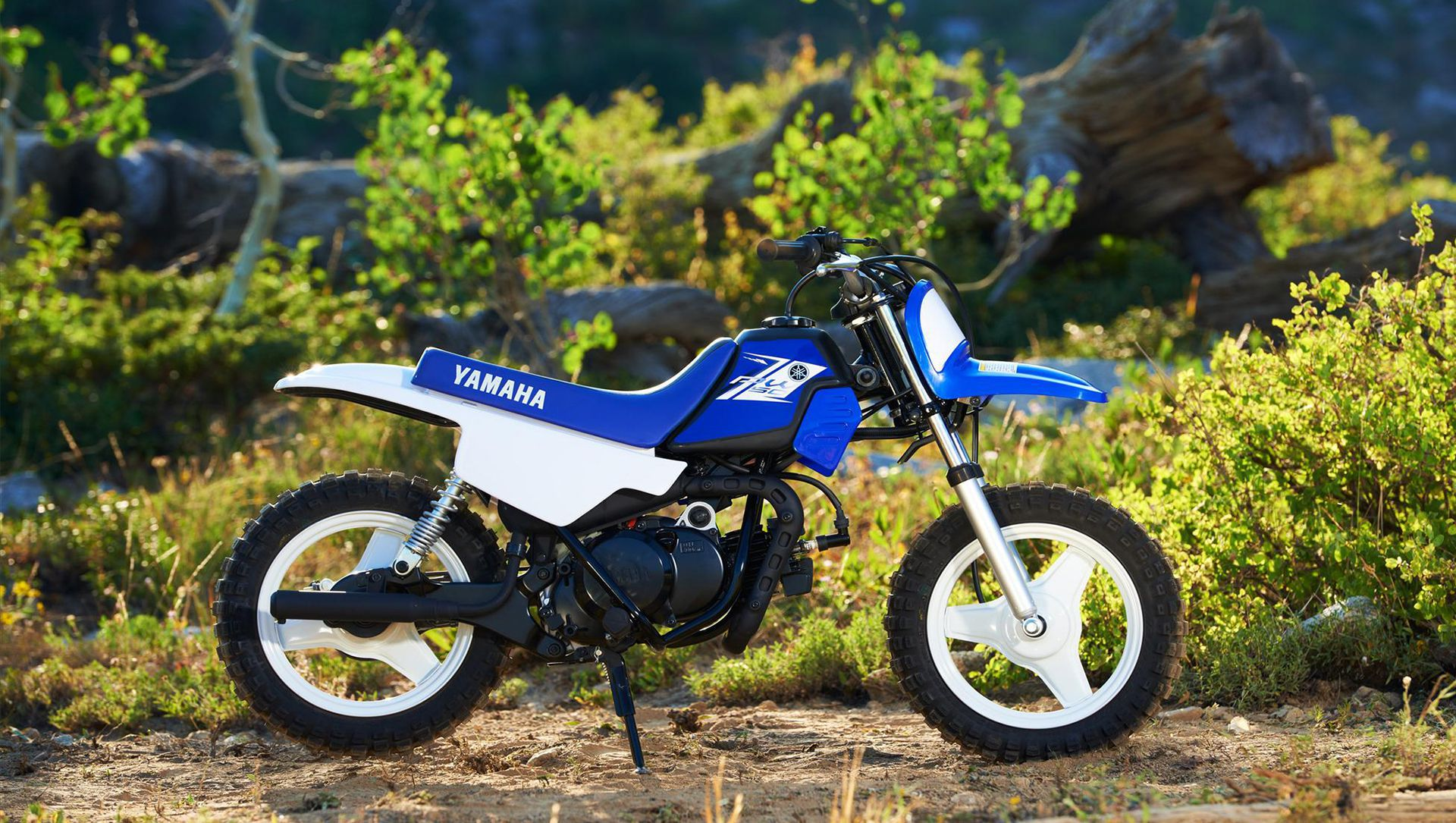 Yamaha PW50 mini-bike YZ-Series styling | Auto Moto | Japan Bullet