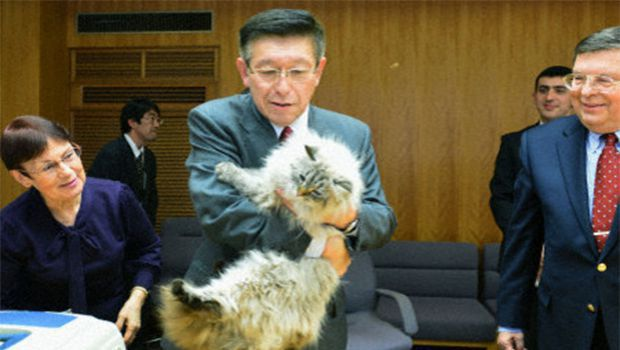 Cat from Russian leader Putin arrives in Akita