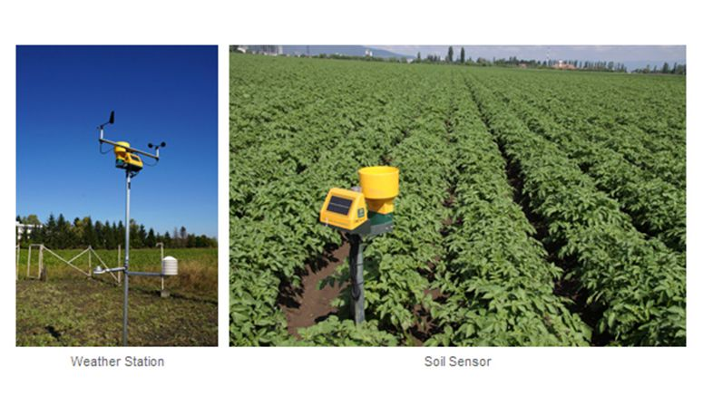NEC and Dacom collaborate on precision farming solution to maximize yields and reduce costs