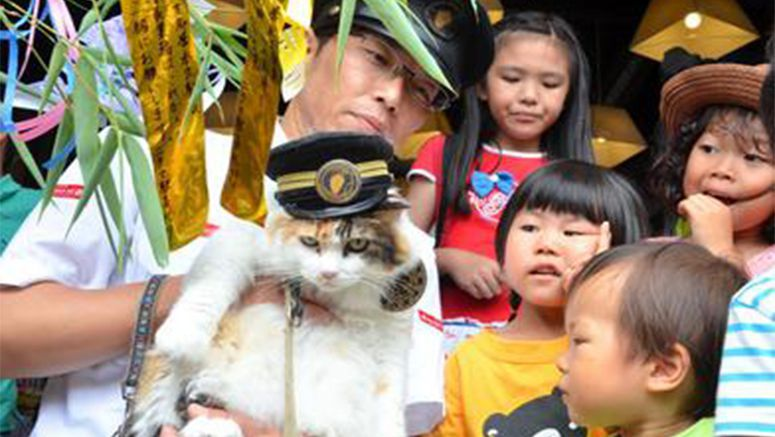 Photo : Children miss cat stationmaster Tama in Japan