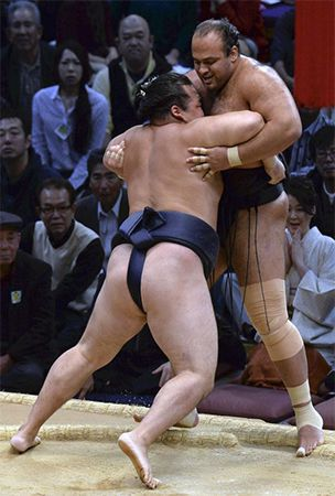 Sumo : High-ranked wrestlers all notch 4th-day wins