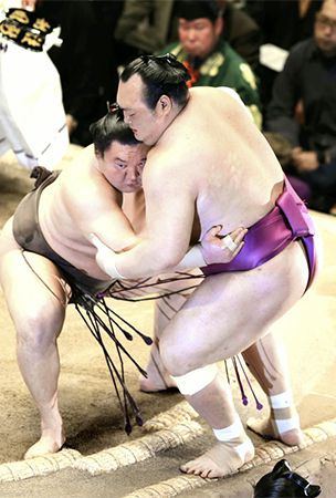 Sumo : Hakuho cruises on 4th day