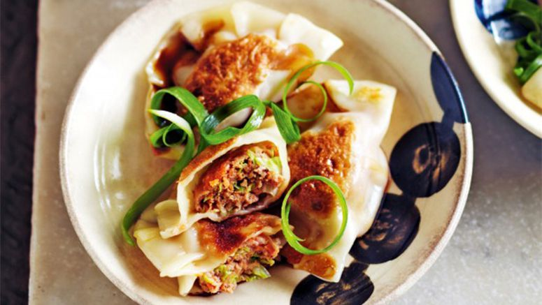 Pork and vegetable gyoza