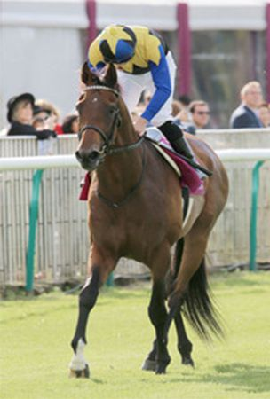 Horse racing: Japan's Makahiki finishes 14th as Found wins Arc