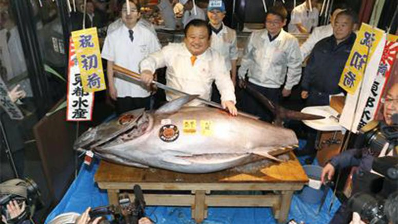 Tuna fetches 74 mil. yen at possible final Tsukiji New Year's auction