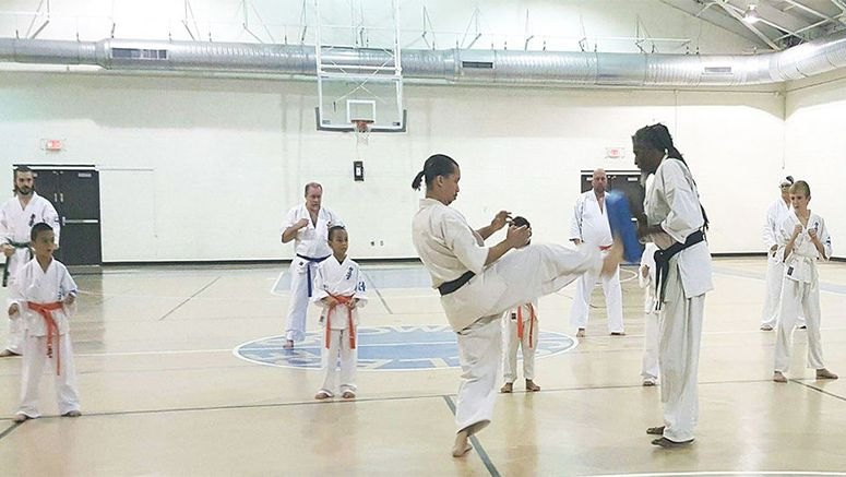 Legendary karate fighter, film star Willie Williams conducts local seminar'