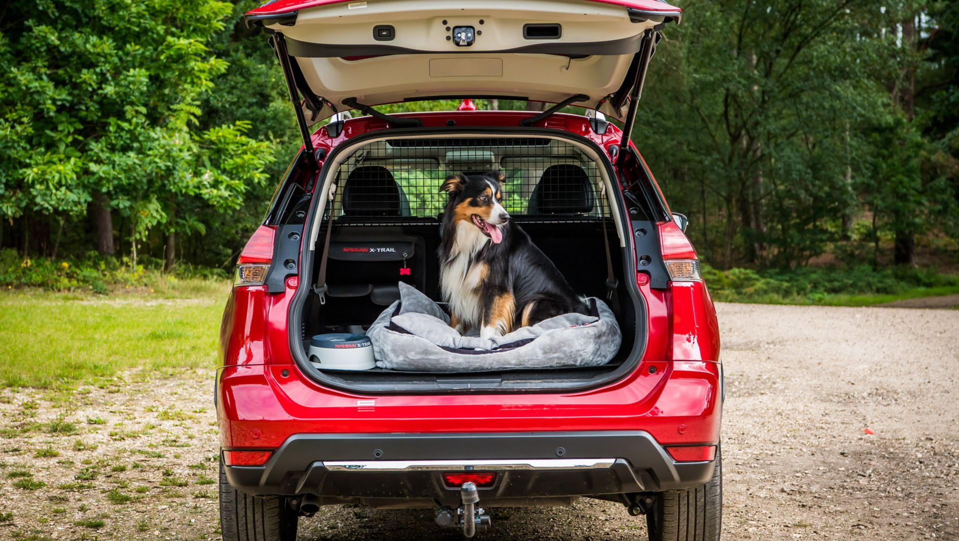 nissan x trail becomes dog friendly with new 39 paw pack 39 auto moto japan bullet. Black Bedroom Furniture Sets. Home Design Ideas