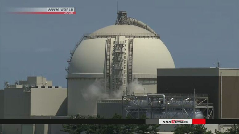 9th nuclear reactor restarts in Japan