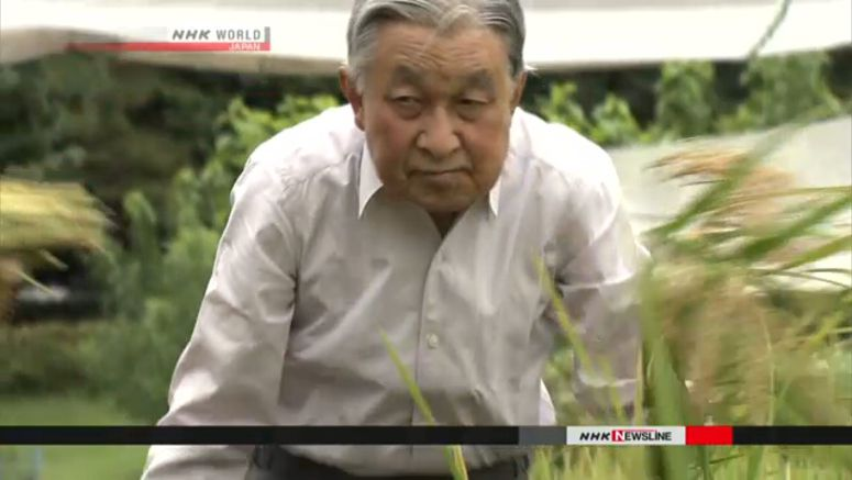 Emperor harvests rice at palace for last time