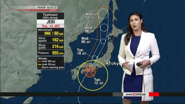 Jebi makes second landfall near Kobe