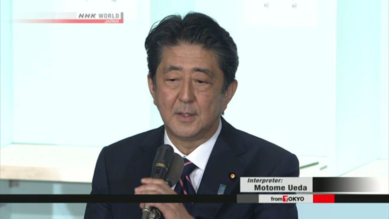 Abe reelected as LDP President