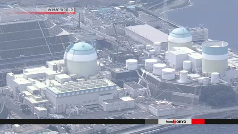 Ikata nuclear reactor goes back online