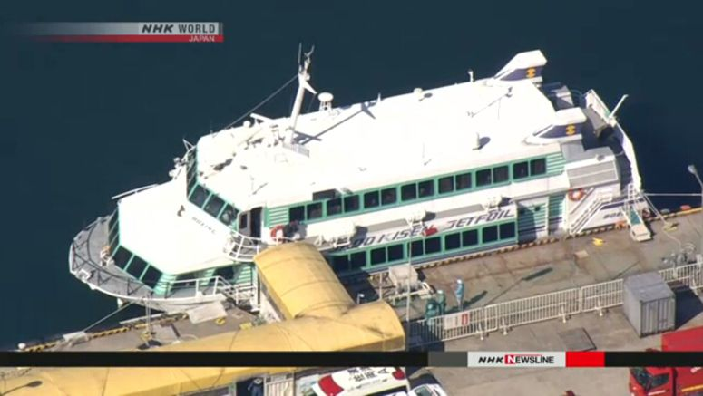 High-speed ferry may have hit whale