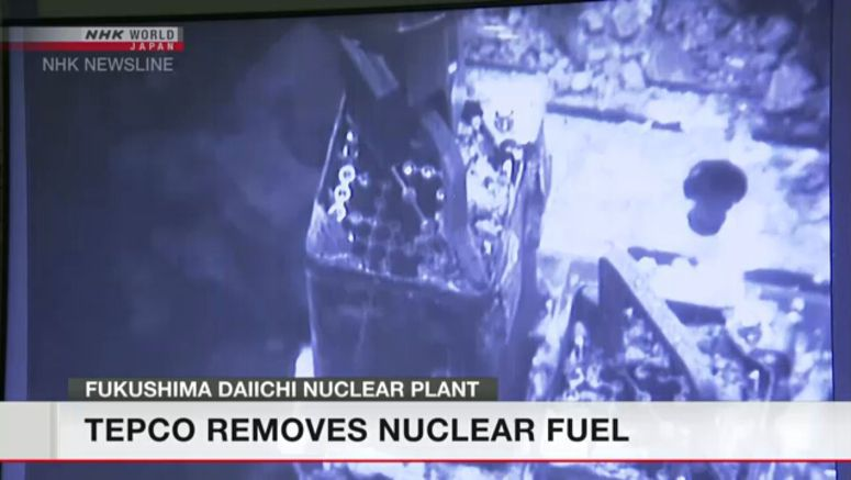 Fuel removal underway at Fukushima plant
