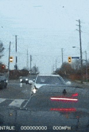 What Just Happened? Lexus Smashes Right Into Kia Stinger At Canadian Traffic Lights