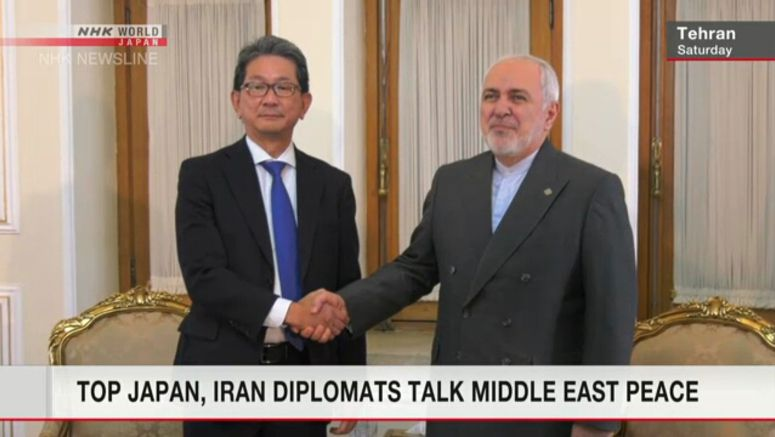 Senior Japanese official meets Iran FM