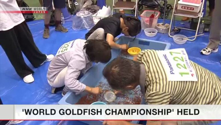 Goldfish scooping contest held in Nara