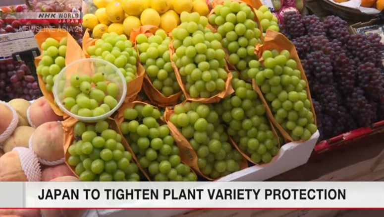 Japan to enhance new plant variety protection