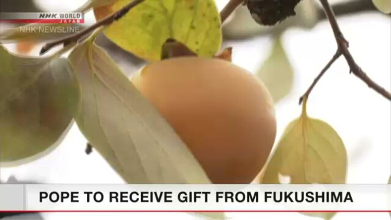 Fukushima persimmons to be presented to Pope