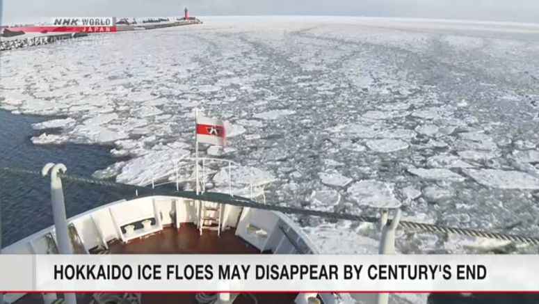 Ice floes may disappear at the end of this century