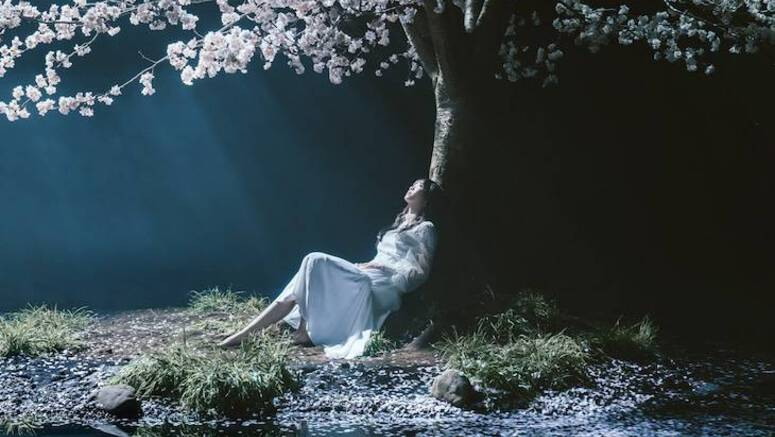 Aimer releases 10 music videos on YouTube