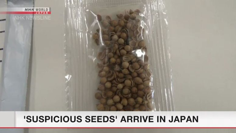 'Suspicious seeds' from overseas reported in Japan