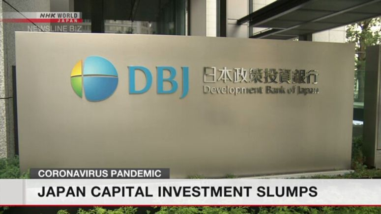 Japan capital investment slumps