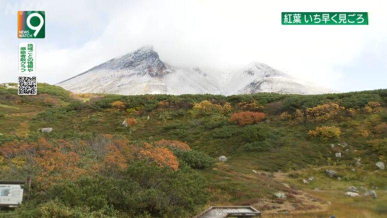Autumn foliage peaks at Asahidake in Hokkaido