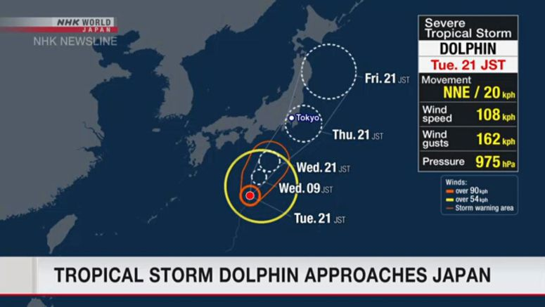 Tropical storm dolphin approaches Japan