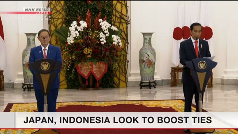 Japan, Indonesia look to boost ties
