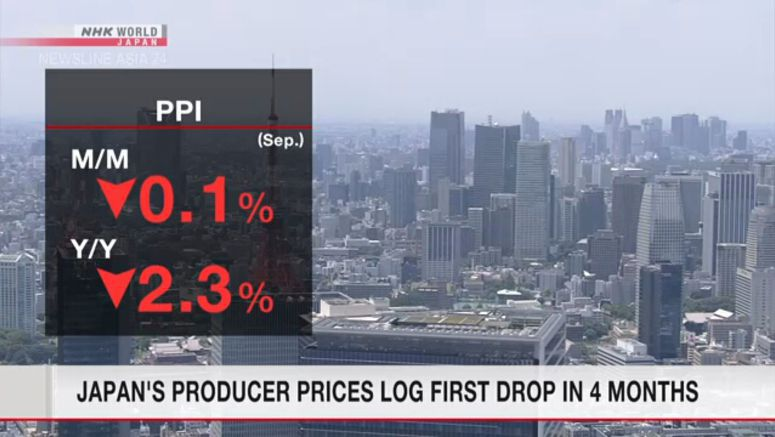 Japan's producer prices log first drop in 4 months