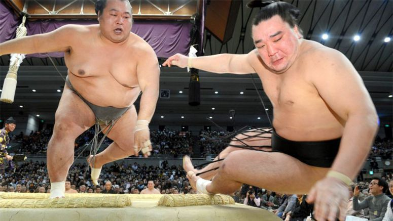 Kyushu Basho 2013 – a tale of two newbies