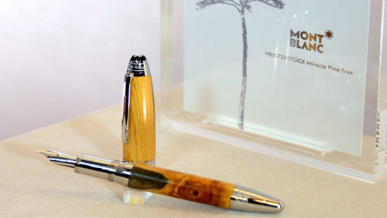 'Miracle pine' gets new life as luxury pen