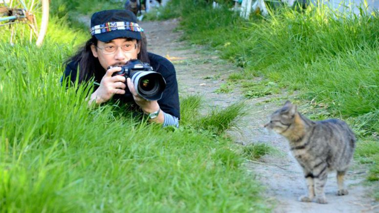 Photos of stray cats along Tama River a reflection of human society