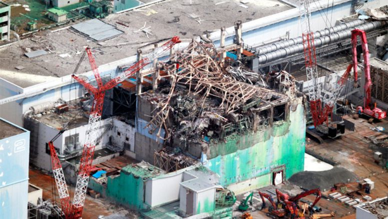 20-ton object removed from Fukushima fuel pool