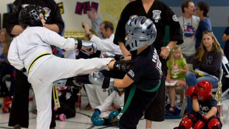 Grass Valley, USA martial arts school shines at karate championships