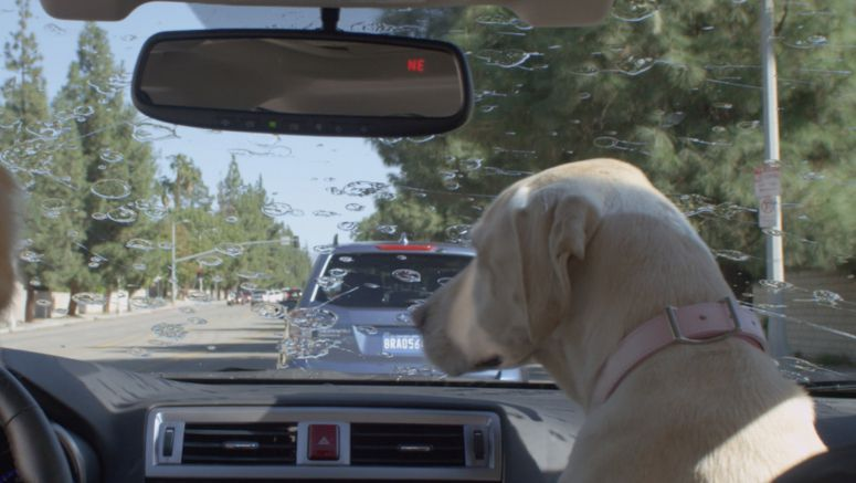 Subaru Launches New Dog Tested Dog Approved TV Ad Campaign