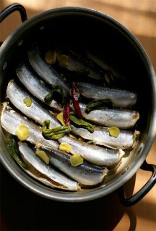 Sardines boiled down in salted water just keep on evolving
