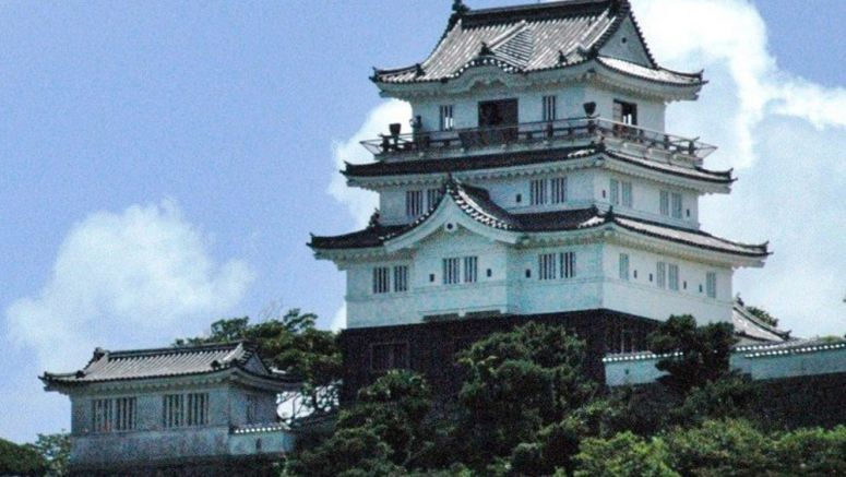 Wanted: Castle master, woman for a night, bargain incorporates free residential flights