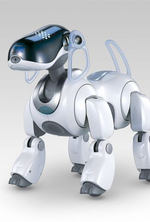 Sony's Next Robot Could Be A New Aibo
