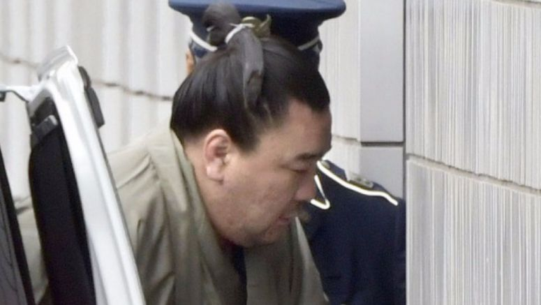 Grand champ Harumafuji questioned by sumo panel, admits assault