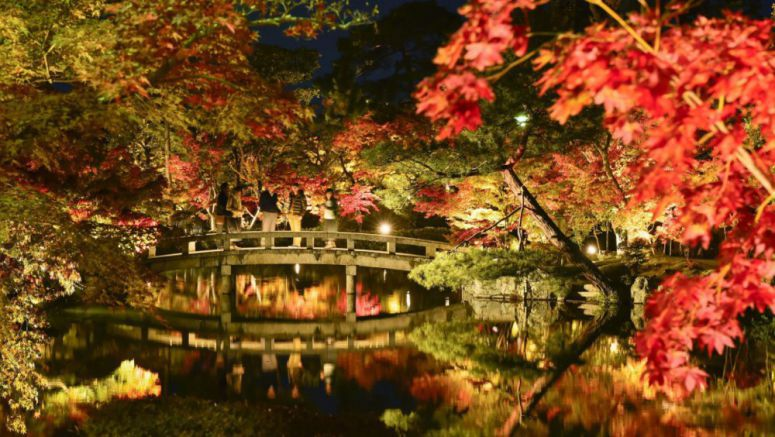 GALLERY: Autumn foliage in Japan's Kyoto