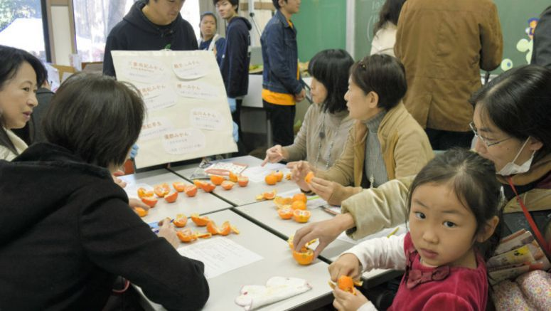 Juicy health benefits seen as path to reversing decline in fruit consumption in Japan