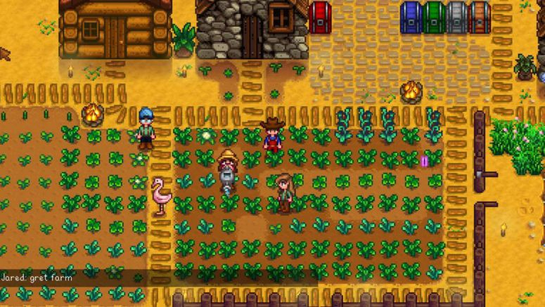 Stardew Valley Collector's Edition Announced In Japan