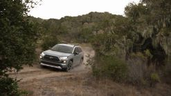 2019 Toyota RAV4 is an IIHS Top Safety Pick +