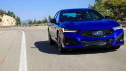 2021 Acura TLX Shows Everything That's New In 130 Photos