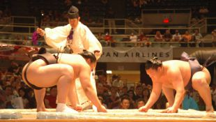 Hakuho keeps the pase at Kyushu
