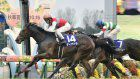Horse racing: Deirdre wins last filly's triple crown race in Shuka-sho