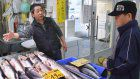 Poor catches lift salmon, saury prices ahead of shopping season